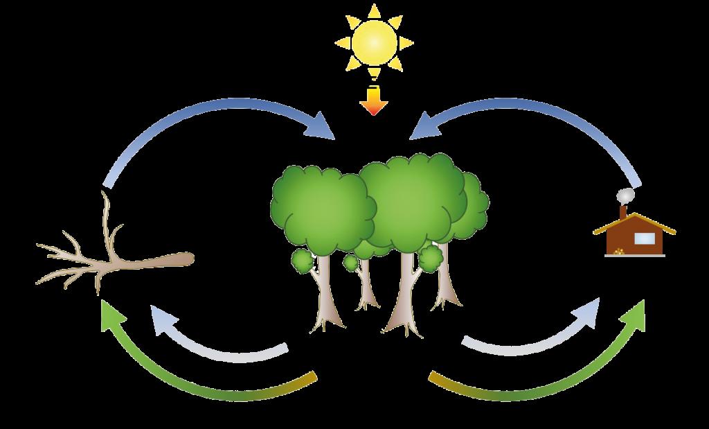 miten puulämmitys toimii luonnon kanssa yhteistyössä